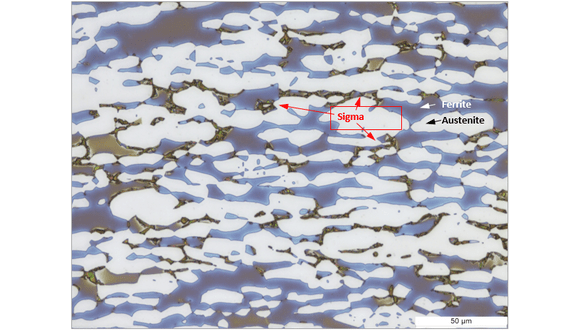 Figure 1. Light micrograph of duplex stainless steel etched in a 20% NaOH solution. Sigma phase appears as the darkest phase, mostly adjacent to the interphase boundaries as marked with red arrows