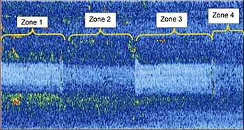 Fig.19. Pan view of ultrasonic data showing the four weld zones and the differing noise levels