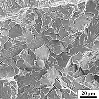 Fig.16a) Scanning electron micrograph of the cleavage initiation area in front of the fatigue crack-tip of specimen no. 1, representative of the main cleavage initiation mechanism (Group 1), characterised by moderate local plastic strain