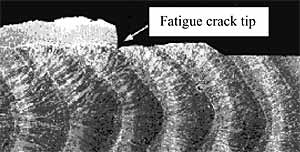 Fig.7. Fatigue crack tip in fusion boundary of surface notched specimen with cleavage initiation at edge of transformed HAZ in QT2N steel, M=2.15, (K J=280MPam 0.5 at -40°C)