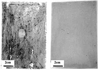 Fig. 9. Optical image of the exposed surface of AZ91D (left) and AZ91D coated with 35µm Keronite coating (right) after 1000 hours of salt spray (ASTM B117) test