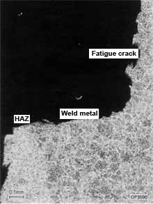 Fig.5. SCC in HAZ following lateral extension from weld metal fatigue crack