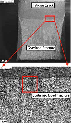 Fig.4. Scanning electron images showing the fracture face morphology of a SENB test specimen, of parent metal M4, postweld heat treated at 650°C for one hour. 15kV secondary electron image, nominal magnification scales shown