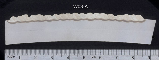 Figure 4. Macrosections taken through the samples relating to test weld W03. Scale ruler shown: (a) W03-A: first layer appearance, showing fairly even HAZ (SMAW electrode ø2.5mm);