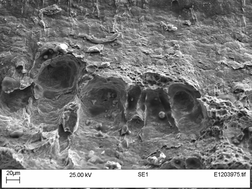 Figure 12. Sample W01-50 under the SEM showing large voids at inclusions at the site of initiation on the left of Figure 10