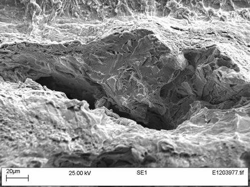 Figure 13. Sample W01-50 under the SEM showing a fracture adjacent to a split, at the right of Figure 10