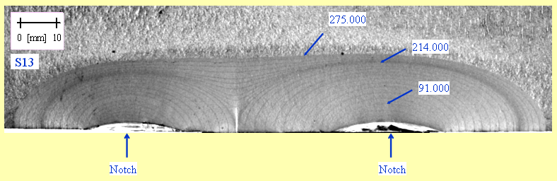 Figure 4: Image of the fatigue crack growth from twin co-planar flaws [5]
