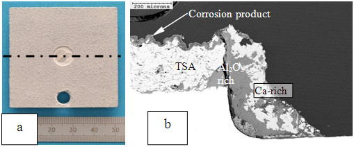 Figure 2: TSA-coated pitting corrosion specimen showing (a) exposed weld area, and (b) cross section along the holiday.
