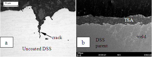 Figure 3: Transverse cross sections of (a) uncoated DSS and (b) TSA coated DSS after chloride SCC tests.
