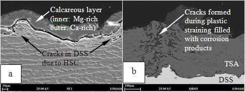 Figure 5: SEM images of cross sections of (a) uncoated and (b) TSA coated DSS after HISC testing at 575 MPa.