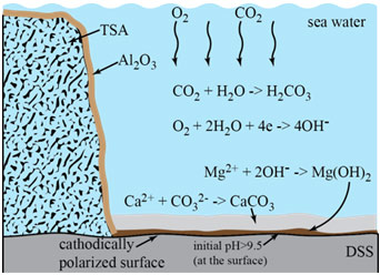 Figure 8: Mechanism of calcareous deposit formation on a cathodically polarized steel surface in seawater.