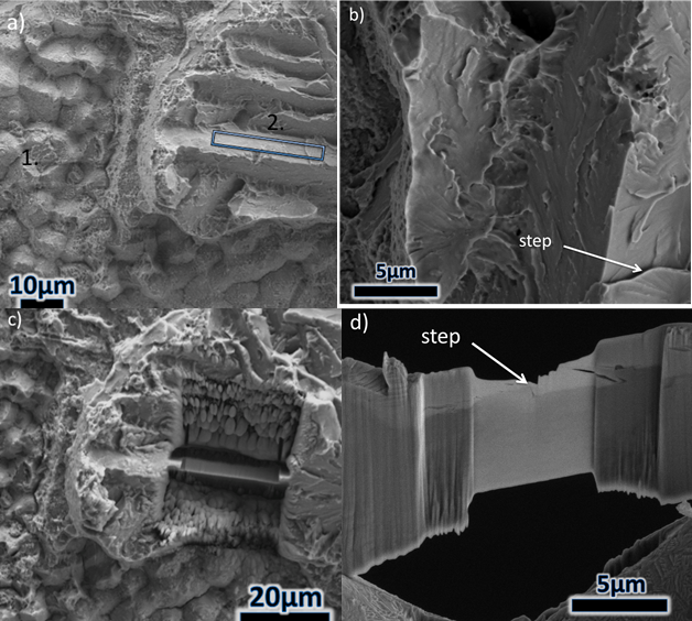 Figure 9 – Retrieved subsea 8630-625 specimen fracture surface: a) selection of sample cleavage-like surface for wafer extraction b) high magnification image showing steps on the cleavage-like surface, c) SEM image showing area from which wafer was r