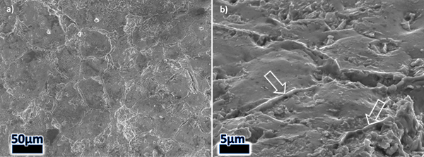 Figure 12 – Images of the 8630-Alloy 625 SENB fracture surface (steel side) in the as-welded condition. A) A typical region of interface disbonding. B) Higher magnification, tilted image of the disbonded region. Arrows indicate prior-austenite grain