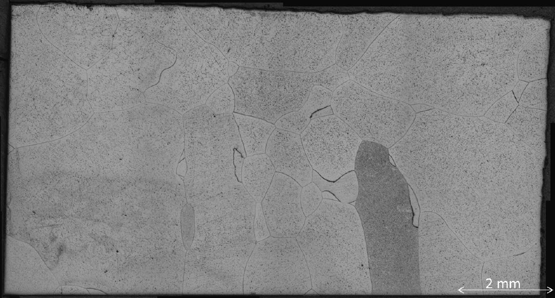 Figure 2: Optical micrograph of coarse grained low density, high aluminium, steel cast sample. Courtesy of Neil Hollyhoke, WMG{University of Warwick