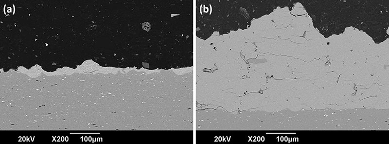 Fig. 11 Cross section BSE images of the coating deposition of as-received particles (a) and solution heat-treated (b) and of AA7075 powder showing a high thickness (300 μm) in the second case