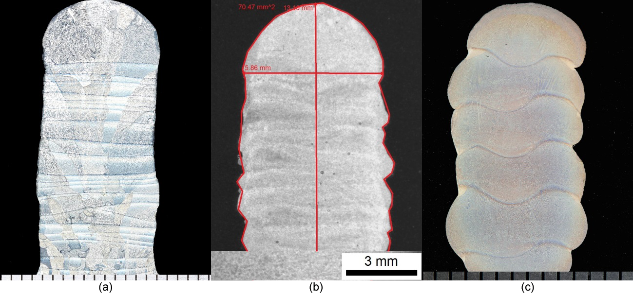 Figure 3. Macro sections of (a) Ti-6Al-4V, (b) AA4043, and (c) IN718 Arc Based AM walls