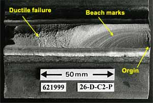 Fig.2. Typical fatigue crack fracture surface