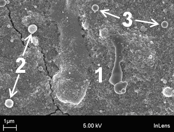 Fig. 6 The microstructure of a titania coating consisting of deformed melted material solidified on the surface (1, rutile), agglomerates which are partially melted (2, anatase) and those which have resolidified in flight (3, anatase).