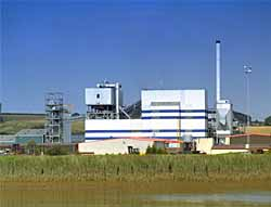 A typical large scale biomass plant