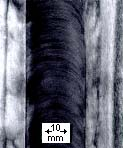 Typical surface appearance of FSW butt weld in 3mm low carbon steel showing a regular series of part circular ripples pointing towards the start of the weld