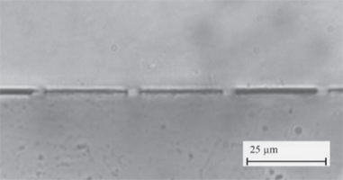 Fig. 4 Laser welded sample in cross section. The tops of the 5 μm wide tracks have been welded to the top sheet of PMMA. Gaps with a height of a few hundred nanometres have been left on either side of the welded tracks.